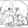 【群盲象を評す】平面的な意見と、立体的な真実の関係 - 禅の視点 - life -